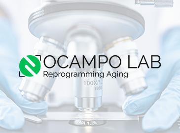Diseño de logotipo para laboratorio