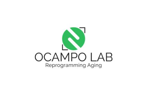 Diseño de logotipo vertical Ocampo Lab